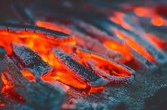 καίγοντας δάσος Φλόγες και σπινθήρες πυρκαγιάς σε ένα σκοτεινό υπόβαθρο Στοκ φωτογραφία με δικαίωμα ελεύθερης χρήσης