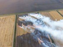 Καίγοντας άχυρο στους τομείς μετά από να συγκομίσει τη συγκομιδή σίτου στοκ εικόνα