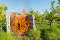 Καίγοντας απόβλητα περικοπής Στοκ Φωτογραφίες
