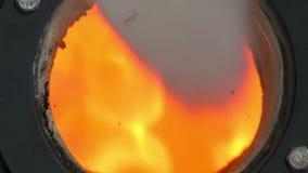 Καίγοντας βιο μαζικά καύσιμα φιλμ μικρού μήκους