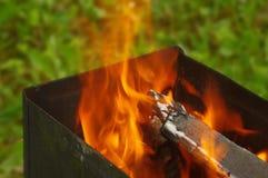 καίγοντας δάσος Στοκ Φωτογραφία