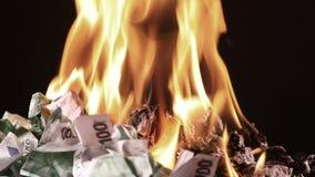 Καίγοντας εκατό ευρο- τραπεζογραμμάτια περιστραφείτε απόθεμα βίντεο