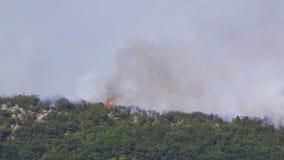 Καίγοντας θάμνοι στους λόφους απόθεμα βίντεο