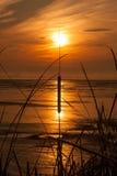 Καίγοντας κάλαμος στην αντανάκλαση ηλιοβασιλέματος Στοκ φωτογραφία με δικαίωμα ελεύθερης χρήσης