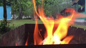 Καίγοντας καυσόξυλο στη σχάρα απόθεμα βίντεο