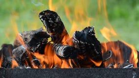 καίγοντας καυσόξυλο Τα εγκαύματα φλογών στη σχάρα Κινηματογράφηση σε πρώτο πλάνο πυρκαγιάς φιλμ μικρού μήκους