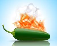 καίγοντας καυτό πιπέρι jalapeno Στοκ Φωτογραφία