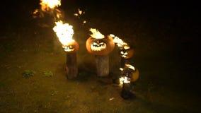 Καίγοντας κολοκύθες αποκριών στο σκοτάδι σύνδεσης δέντρων, τομέας, υδρονέφωση, σούρουπο Η τρομακτική αστείαη μεγάλη πορτοκαλιά κο απόθεμα βίντεο