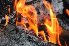 Καίγοντας κούτσουρα με τις ανοικτές φλόγες Στοκ Φωτογραφίες