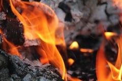 Καίγοντας κούτσουρα με τις ανοικτές φλόγες Στοκ εικόνα με δικαίωμα ελεύθερης χρήσης