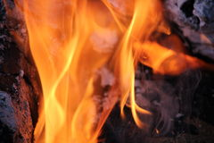 Καίγοντας κούτσουρα με τις ανοικτές φλόγες Στοκ Φωτογραφία