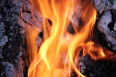 Καίγοντας κούτσουρα με τις ανοικτές φλόγες Στοκ φωτογραφία με δικαίωμα ελεύθερης χρήσης