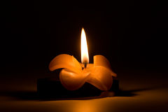 καίγοντας μορφή λουλο&upsil Στοκ Φωτογραφία