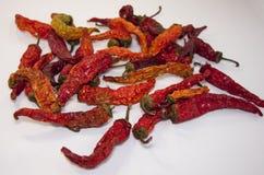 Καίγοντας ξηρό κόκκινο πιπέρι Στοκ Εικόνες