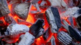 Καίγοντας ξυλάνθρακας απόθεμα βίντεο