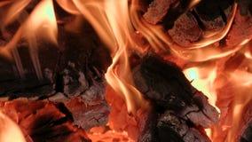 Καίγοντας ξύλο και άνθρακας Κινηματογράφηση σε πρώτο πλάνο απόθεμα βίντεο