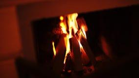 Καίγοντας ξύλο στην εστία στο σπίτι στο χειμώνα, ρομαντικό βράδυ με την οικογένεια Κλείστε αυξημένος σε 4k απόθεμα βίντεο