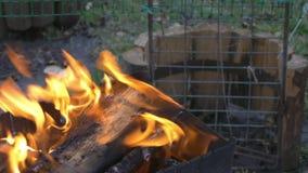 Καίγοντας ξύλο και άνθρακας στον ορειχαλκουργό Προετοιμασία της σχάρας shish kebab και σχάρα απόθεμα βίντεο