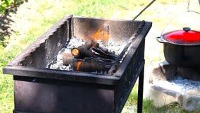Καίγοντας ξύλο σε έναν ορειχαλκουργό για τη σχάρα Πυρκαγιά απόθεμα βίντεο