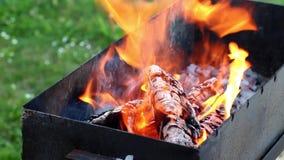 Καίγοντας ξύλο στην πυρκαγιά στη θέση σχαρών απόθεμα βίντεο