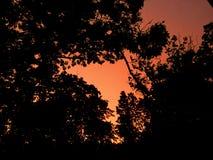 καίγοντας ουρανοί Στοκ Εικόνες