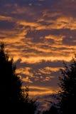 καίγοντας ουρανός Στοκ Εικόνα