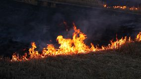καίγοντας πεδίο φιλμ μικρού μήκους