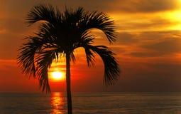 Καίγοντας πορτοκαλής ουρανός Στοκ εικόνες με δικαίωμα ελεύθερης χρήσης
