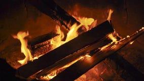 Καίγοντας πυρκαγιά στρατόπεδων σε μια θερμή θερινή νύχτα απόθεμα βίντεο