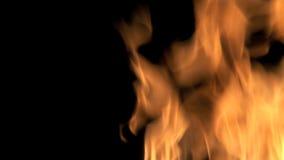 καίγοντας πυρκαγιά απόθεμα βίντεο