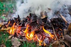 καίγοντας πυρκαγιά Στοκ Εικόνα