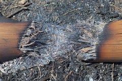 Καίγοντας τέφρες Στοκ εικόνες με δικαίωμα ελεύθερης χρήσης