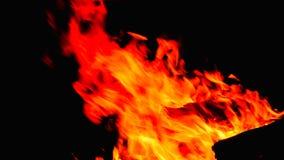 καίγοντας φλόγες μιας φωτιάς Στοκ εικόνα με δικαίωμα ελεύθερης χρήσης