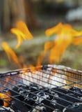 Καίγοντας φλόγες πέρα από τη σχάρα Στοκ εικόνες με δικαίωμα ελεύθερης χρήσης