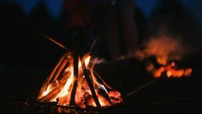 Καίγοντας φωτιά των ξηρών κλάδων στη δασική κινηματογράφηση σε πρώτο πλάνο φιλμ μικρού μήκους