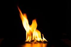 Καίγοντας φλόγα πυρκαγιάς στο μαύρο υπόβαθρο Στοκ Φωτογραφίες