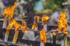 Καίγοντας φλόγα πυρκαγιάς Στοκ Εικόνα