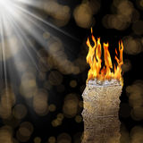 καίγοντας χρήματα Στοκ εικόνα με δικαίωμα ελεύθερης χρήσης