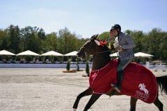Καβάλλα στα άλογα Στοκ φωτογραφία με δικαίωμα ελεύθερης χρήσης