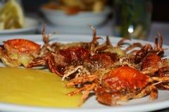 Καβούρια της Shell και cornmeal mush, υπόβαθρο Στοκ Εικόνα
