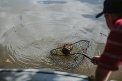 Καβούρι αλιείας που πιάνεται σε καθαρό στοκ εικόνες