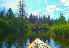 Καγιάκ στον ποταμό Algonquin στο πάρκο Στοκ Εικόνα