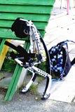 Καγκουρό αθλητικού εξοπλισμού Στοκ φωτογραφία με δικαίωμα ελεύθερης χρήσης
