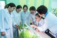2019-09-01, Καζακστάν, Kostanay hydroponics Μαθήτριες και ένας δάσκαλος στα άσπρα παλτά σε μια κατηγορία της βιολογίας ή βοτανική στοκ εικόνες