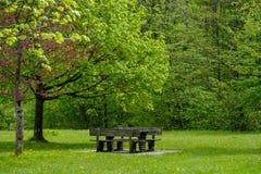 Καθίσματα στο πάρκο Στοκ φωτογραφίες με δικαίωμα ελεύθερης χρήσης