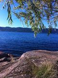 Καθαρή λίμνη την πράσινη άνοιξη Στοκ Φωτογραφίες
