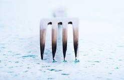 καθαρή αγνότητα δικράνων Στοκ εικόνες με δικαίωμα ελεύθερης χρήσης