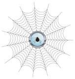 καθαρή αράχνη απεικόνιση αποθεμάτων