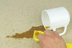 Καθαρίζοντας λεκές καφέ από τον τάπητα Στοκ Εικόνες