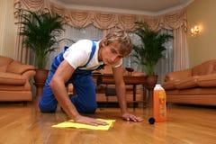 καθαρίζοντας επαγγελματίας στοκ φωτογραφία